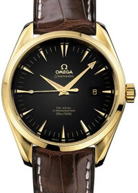 Omega Aqua Terra 150M Co‑Axial Chronometer 231.10.42.21.06.001